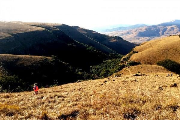 Num Num Trail