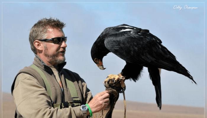 Bird Handling